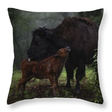 Natures Tender Moments Throw Pillow