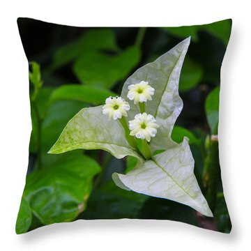 Nature's Triplets Throw Pillow by Christopher L Thomley