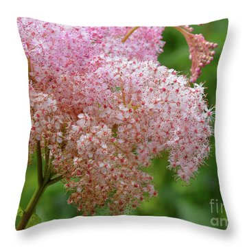 Natures Untouched Beauty Throw Pillow
