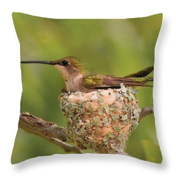 Nature's Wonder Throw Pillow by Don Wolf