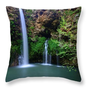 Nature's World Throw Pillow