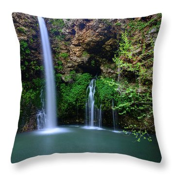 Nature's World Throw Pillow
