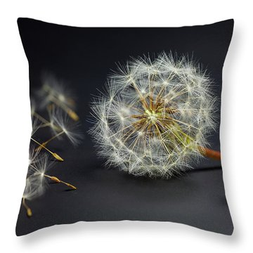 Throw Pillow featuring the painting Naughty Girl Playing Dandelion Little People Big World by Paul Ge