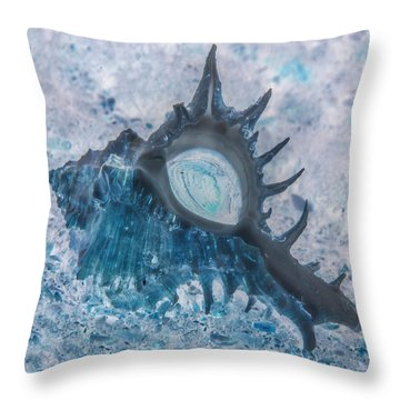 Throw Pillow featuring the photograph Nautical Beach And Fish #13 by Debra and Dave Vanderlaan