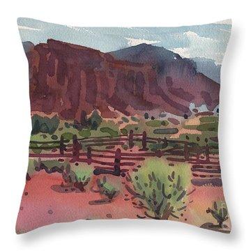 Corral Throw Pillows