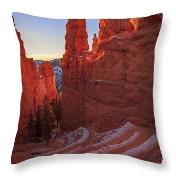 Navajo Loop Throw Pillow