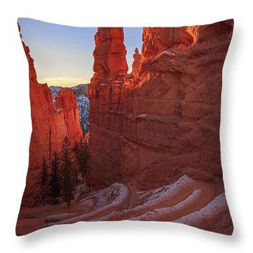 Navajo Loop Throw Pillow by Edgars Erglis