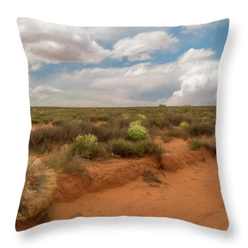 Navajo Reservation Throw Pillow