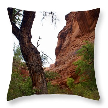 Near Moab 2 Throw Pillow by Marty Koch