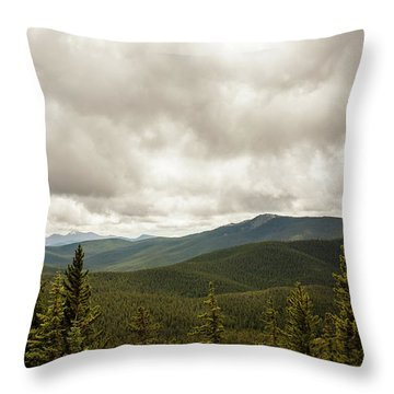 Near Monarch Pass At The Continental Divide Throw Pillow