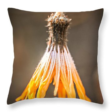Throw Pillow featuring the photograph Near The End by Michaela Preston