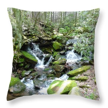 Throw Pillow featuring the photograph Near The Grotto by Joel Deutsch