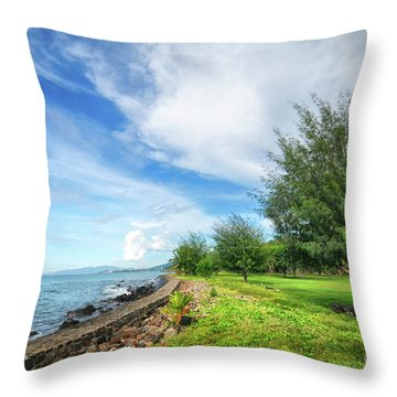 Throw Pillow featuring the photograph Near The Shore by Charuhas Images
