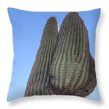 Throw Pillow featuring the photograph Wickenburg Saguaro  by Antonio Romero