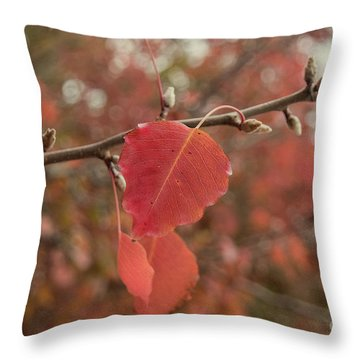 Throw Pillow featuring the photograph Nearing The End by Elaine Teague