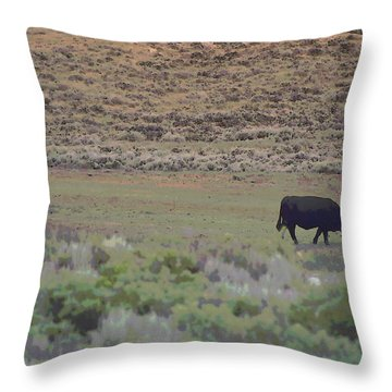 Nebraska Farm Life - The Farm Throw Pillow