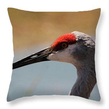 Nebraska Sandhill Crane Throw Pillow