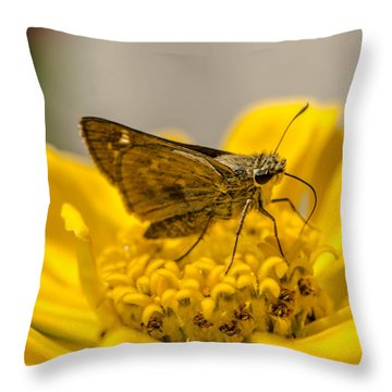 Nectar Delight Throw Pillow by Bruce Pritchett