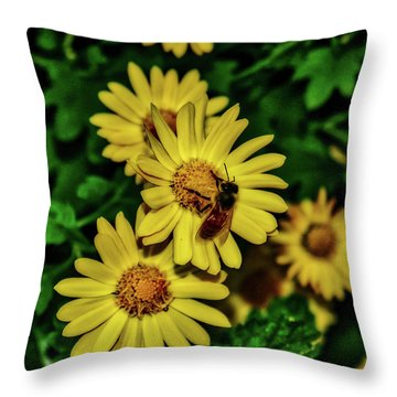Nectar Gathering Throw Pillow