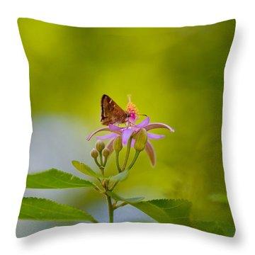 Nectar Treat Throw Pillow