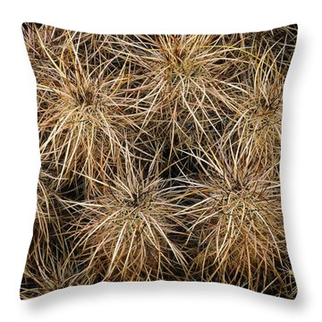 Needles And Hay Stacks Throw Pillow
