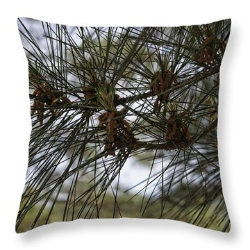 Needles Attached Throw Pillow