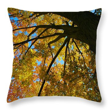 Neighbor's Beauty Throw Pillow