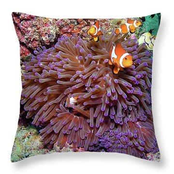 Nemo's Home Throw Pillow