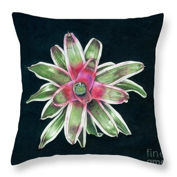 Neoregelia Terrie Bert Throw Pillow