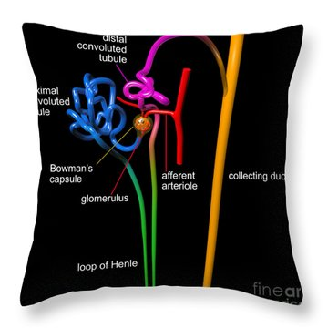 Throw Pillow featuring the digital art Nephron Black With White Labels by Russell Kightley