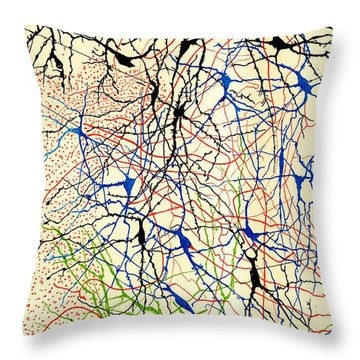 Nerve Cells Santiago Ramon Y Cajal Throw Pillow