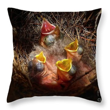 Nest With Brood Parasite Throw Pillow