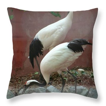Nesting Cranes Throw Pillow by Calvin Nelson