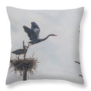 Throw Pillow featuring the photograph Nesting Great Blue Heron by Betty Pauwels