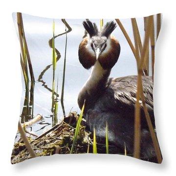 Nesting Grebe Throw Pillow