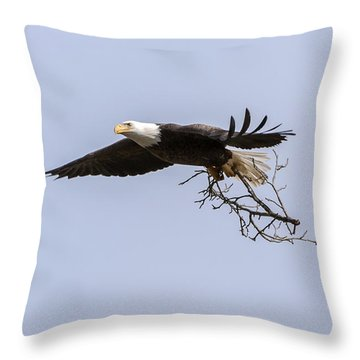 Nesting Materials 1 Throw Pillow