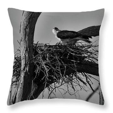 Throw Pillow featuring the photograph Nesting V2 by Douglas Barnard