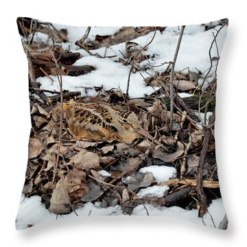 Nesting Woodcock She Survived Her Eggs From The Snow Throw Pillow