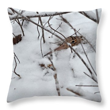 Nesting Woodcock She Will Protect Her Eggs From The Snow Throw Pillow