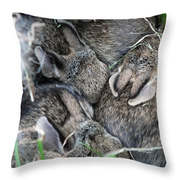 Nestled In Their Den Throw Pillow