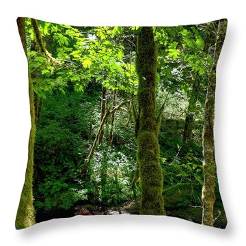 Nestucca River 3039 12x18 Throw Pillow