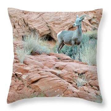 Nevada Rocks 31c Throw Pillow