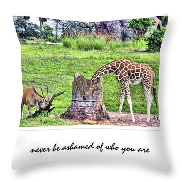 Never Be Ashamed Throw Pillow