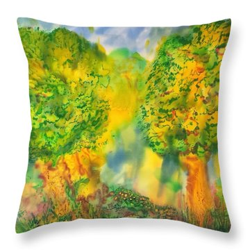 Never Give Up On Your Dreams Throw Pillow
