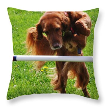 Throw Pillow featuring the photograph Never Give Up by Vadim Levin