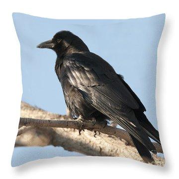 Never More Throw Pillow