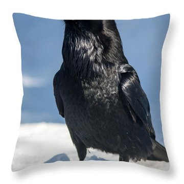 Nevermore Throw Pillow by Jack Bell