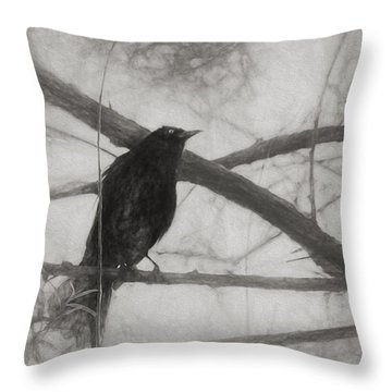 Nevermore Throw Pillow by Melinda Wolverson
