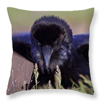 Nevermore Throw Pillow by Todd Kreuter