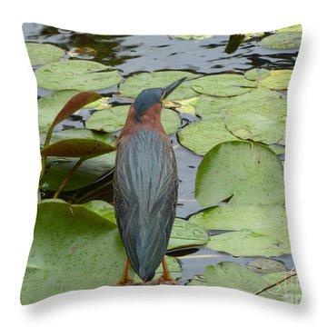 Nevis Bird Observes Throw Pillow